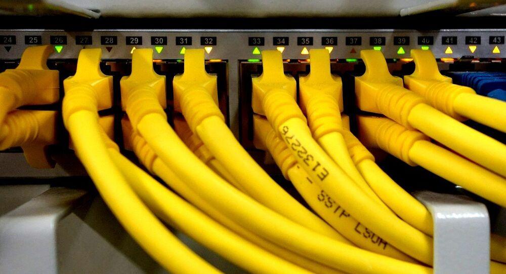 Câbles réseau (image d'illustration)