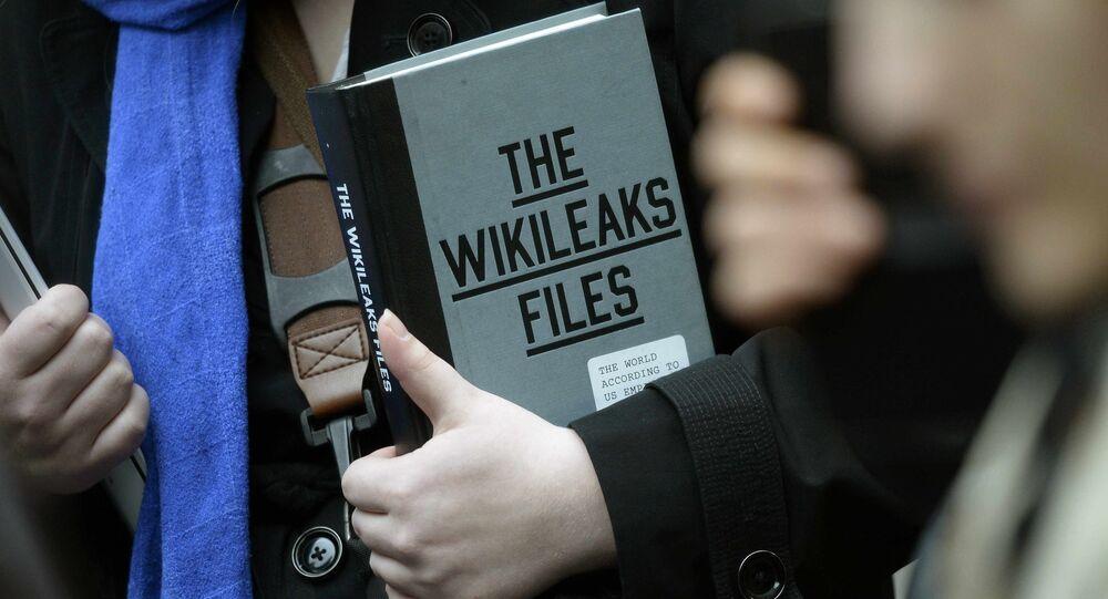 Ein WikiLeaks-Unterstützer vor der ecuadorianischen Botschaft in London