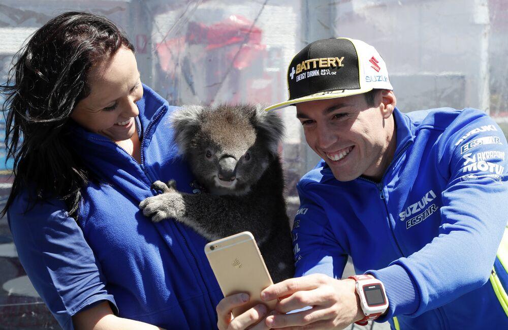 Le pilote de moto espagnol Aleix Espargaró fait un selfie avec un koala à Melbourne, en Australie