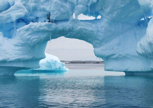 Des icebergs sur la péninsule Antarctique