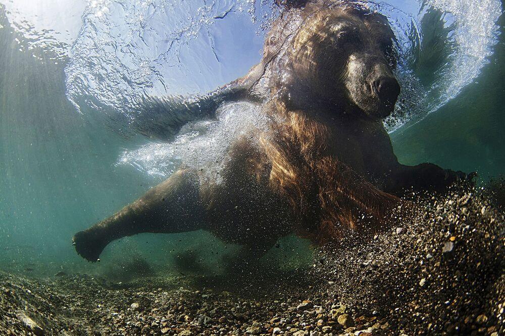 Фотография Decisive throw российского фотографа Mike Korostelev