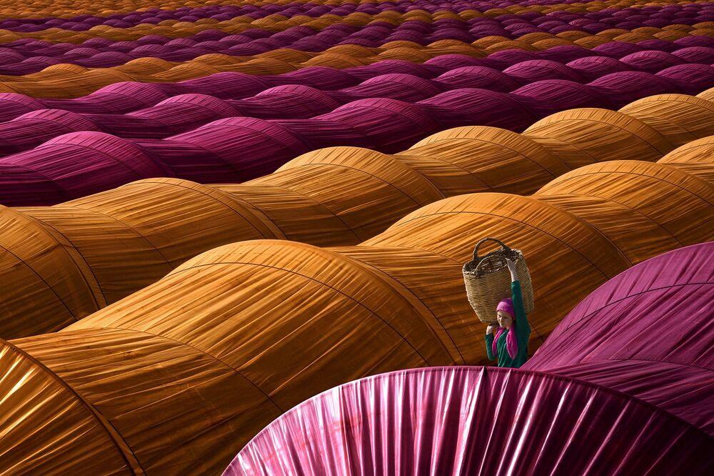 Фотография Strawberry Greenhouses турецкого фотографа Leyla Emektar