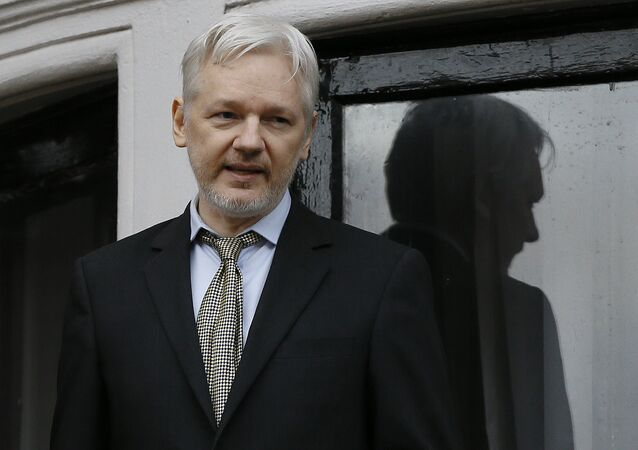 Wikileaks founder Julian Assange speaks from the balcony of the Ecuadorean Embassy in London (File)