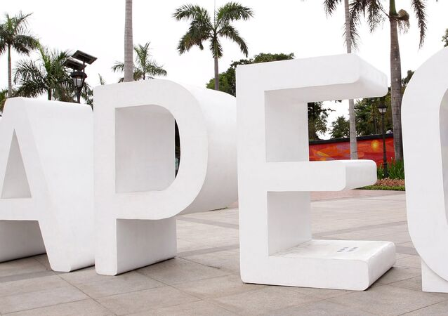 APEC, logo.Archive photo