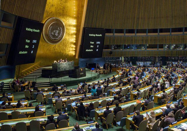 L'Assemblée générale adopte la résolution appelant à cesser les combats en Syrie