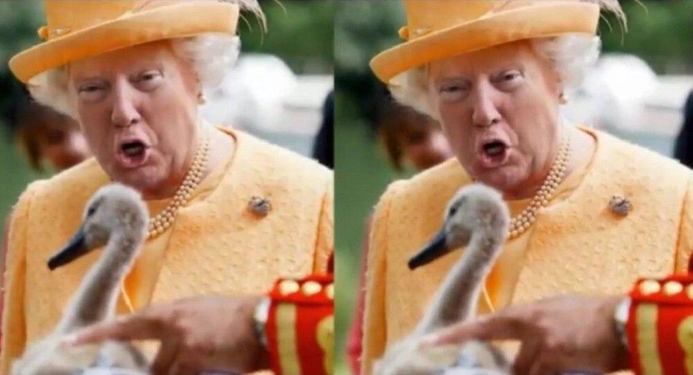 Le «Trump Queen»