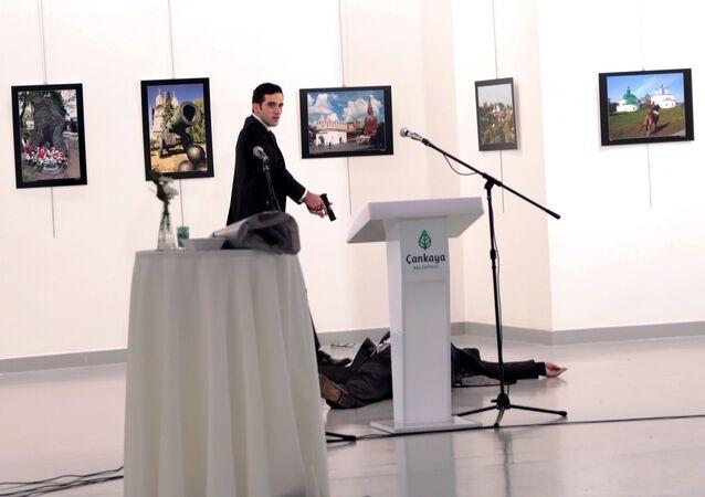 Mevlut Mert Altintas, assassin de l'ambassadeur russe Andreï Karlov