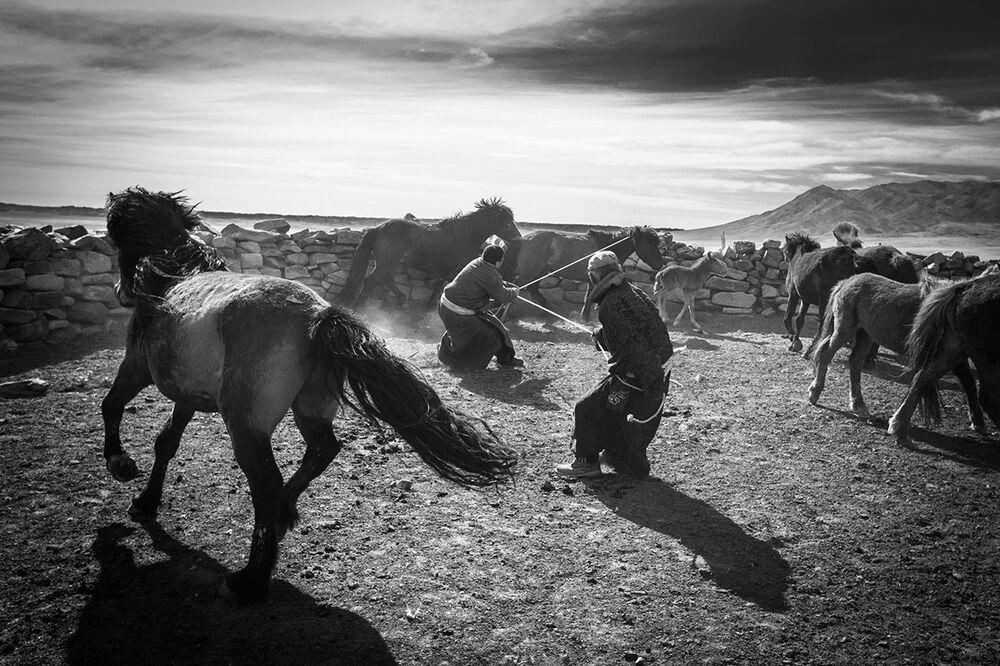 Les meilleurs clichés des photographes globetrotteurs