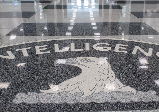 La CIA déclassifie des documents de l'époque de la guerre froide sur la marine soviétique