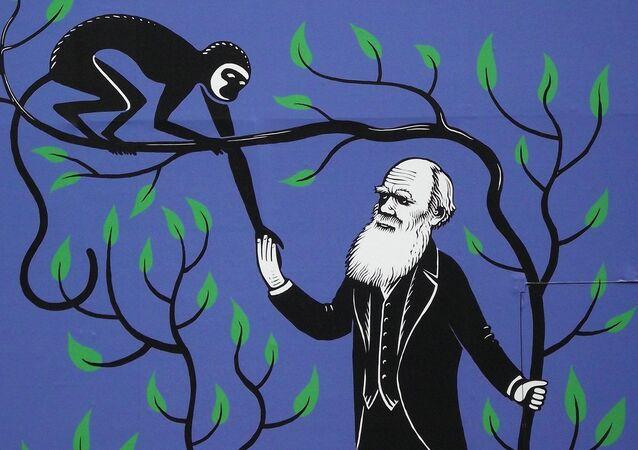 Charles Darwin et la théorie de l'évolution. Image d'illustration