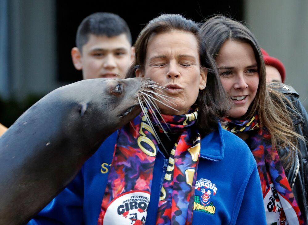 Lors de la 41e  édition du Festival international de cirque de Monte-Carlo, un lion de mer a exprimé sa gratitude à la princesse Stéphanie de Monaco et lui a donné un baise