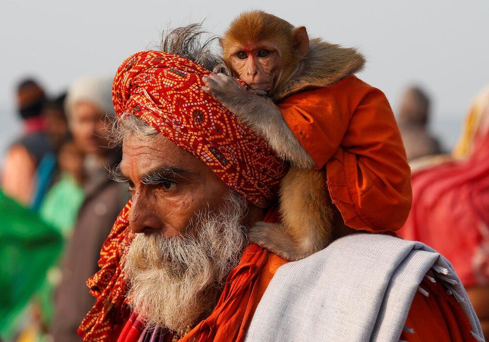 Makar Sankranti, une fête qui vise à marquer le solstice d'hiver, est célébrée non seulement par les hommes, mais aussi par les animaux