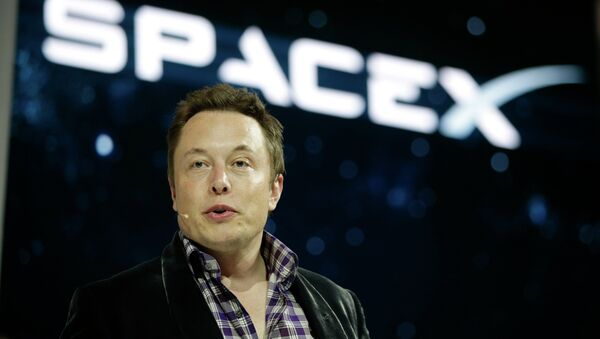 Elon Musk,fondateur de Space X et PDG de Tesla - Sputnik France