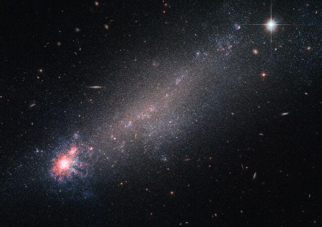 Les étoiles (image d'illustration)