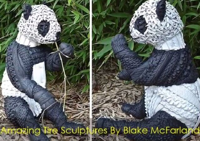 Œuvre de Blake McFarland