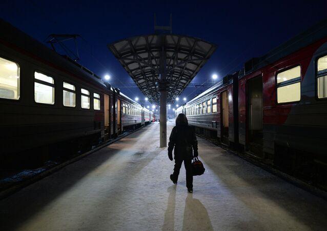 des trains (image d'illustration)