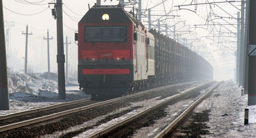 Le train de marchandises sur l'une des branches du Transsibérien dans la région de Novossibirsk