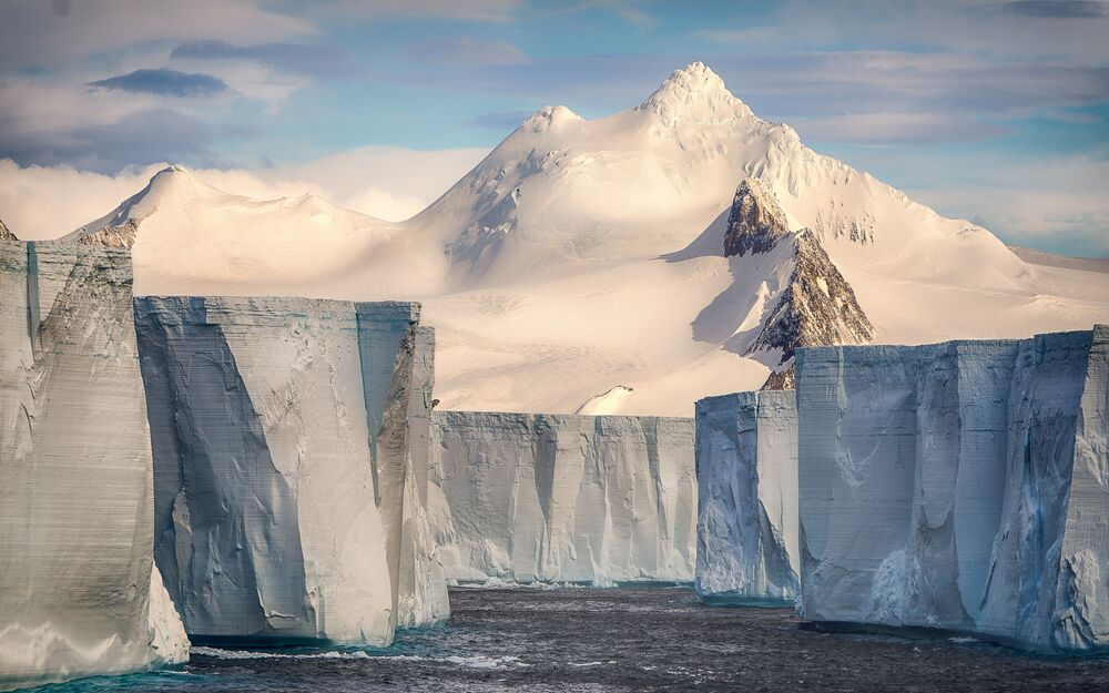 Les gagnants du concours Sony World Photography Awards