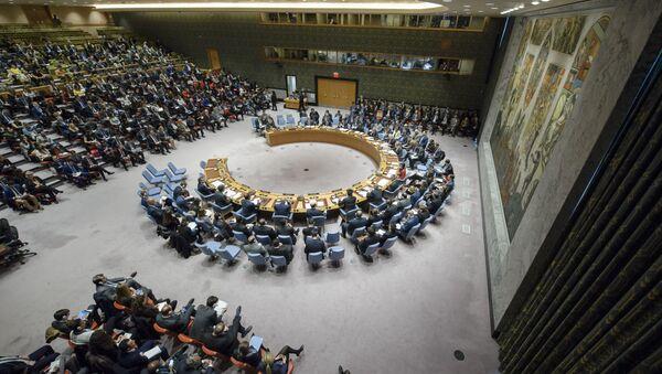 Conselho de Segurança da ONU debate ataque dos EUA à Síria - Sputnik France
