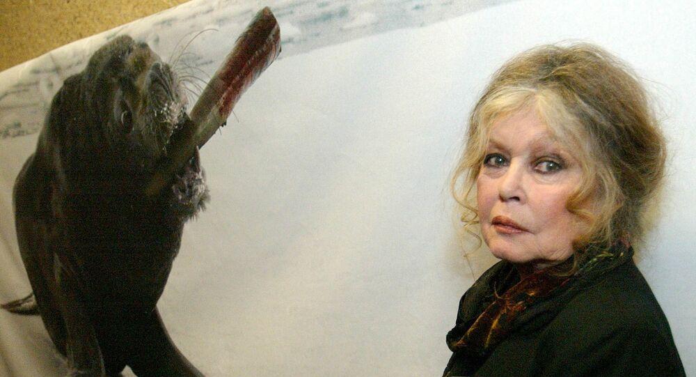 Brigitte Bardot, photo d'archives