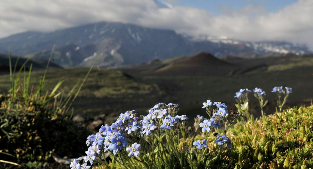Un nouveau complexe touristique verra bientôt le jour au Kamtchatka
