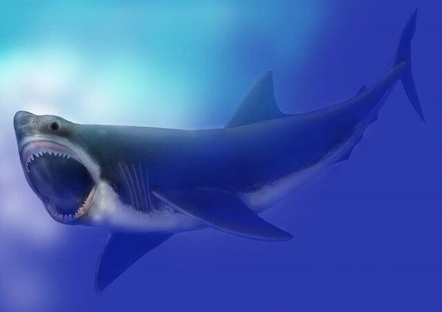 Pourquoi les monstres marins ont disparu