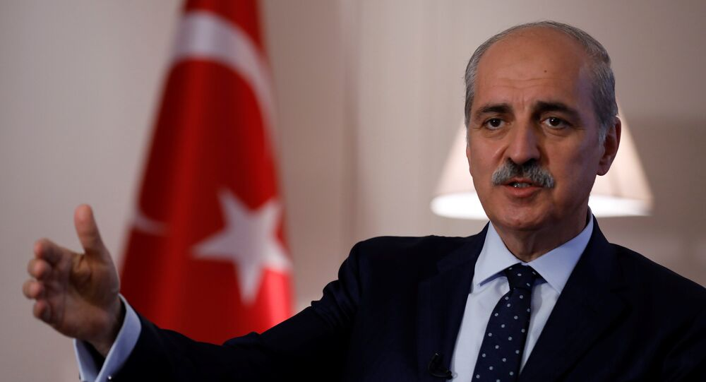 Numan Kurtulmus. Archive photo