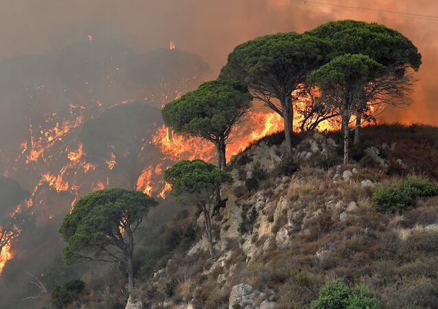 Feux de forêt en Italie