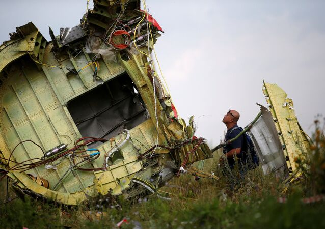 Lieu du crash du vol MH17
