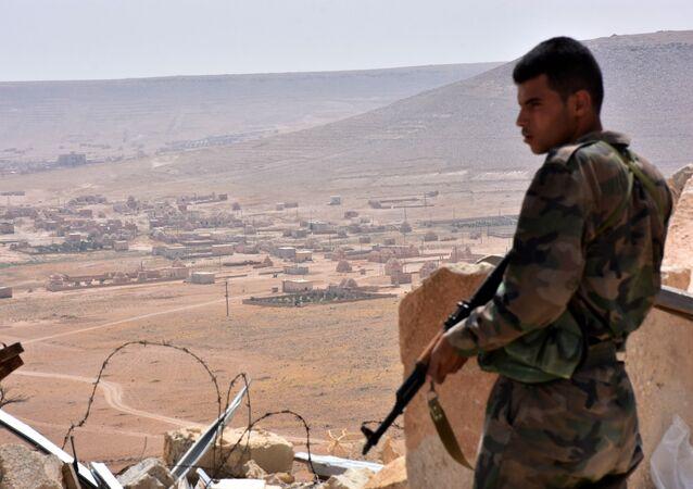 Province d'Alep. Archive photo