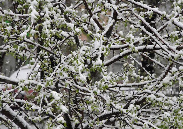 La neige (archives)