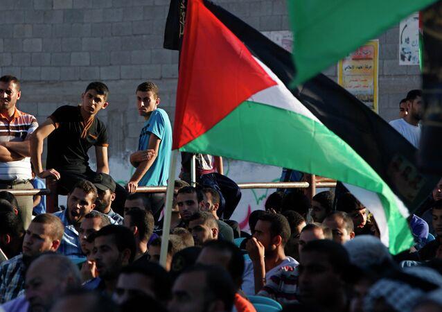 Les drapeaux palestiniens