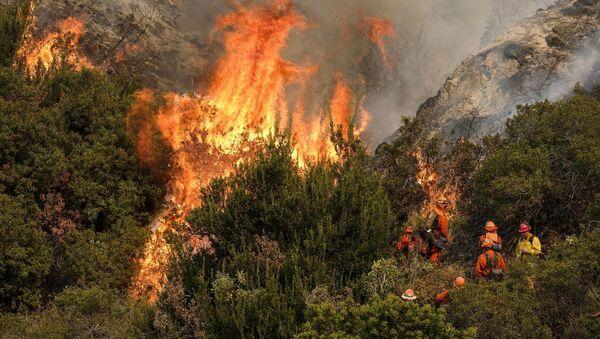 Feux de forêt en Californie - Sputnik France