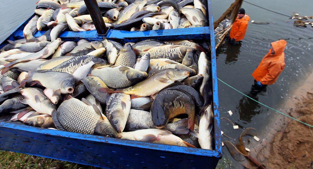 La pêche (photo d'illustration)