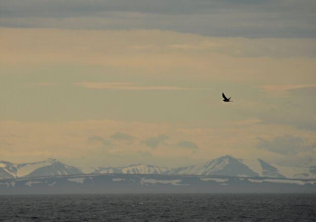 L'archipel Nouvelle-Zemble