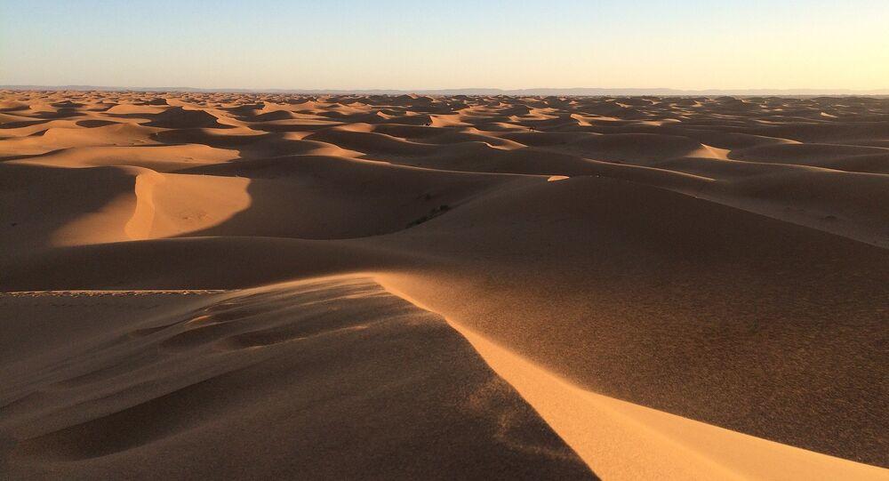 le désert arabique