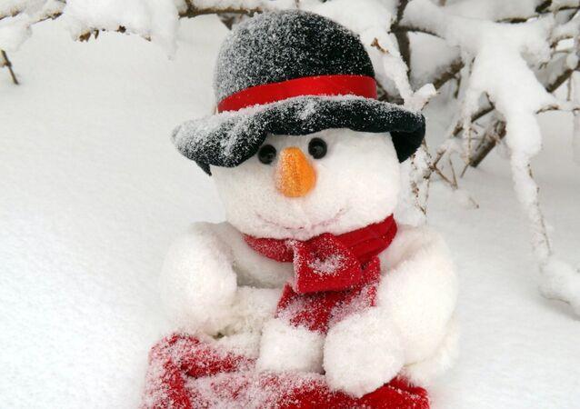 un bonhomme de neige