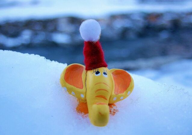La solution miracle pour protéger les animaux du froid inhabituel en Asie