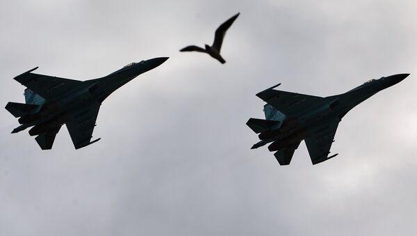 Des chasseurs Su-27 - Sputnik France