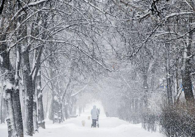 L'hiver (image d'illustration)
