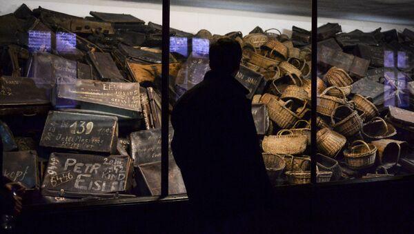 Un visiteur du musée créé sur le territoire de l'ancien camp de concentration d'Auschwitz-Birkenau à Auschwitz. - Sputnik France