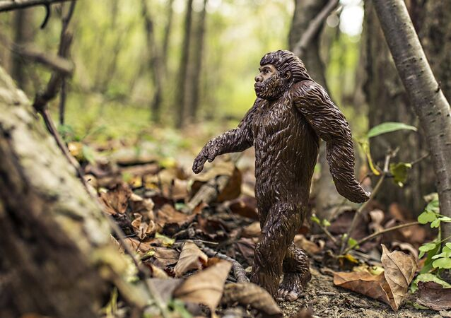 Un bigfoot
