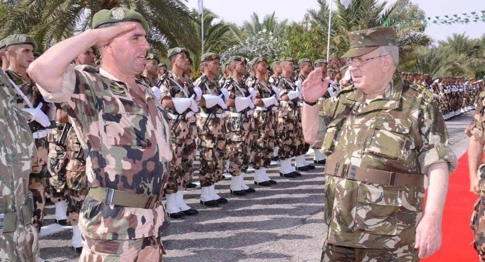 Le général de corps d'armée Ahmed Gaïd Salah, chef d'état-major de l'ANP et vice-ministre de la Défense