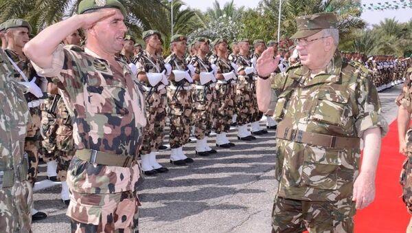 Le général de corps d'armée Ahmed Gaïd Salah, chef d'état-major de l'ANP - Sputnik France