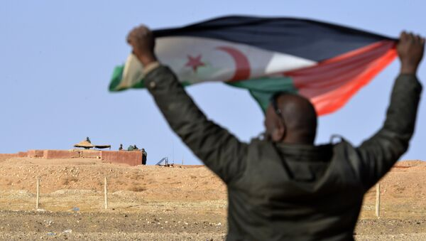 A Saharawi man holds up a Polisario Front flag in the Al-Mahbes area near Moroccan soldiers guarding the wall separating the Polisario controlled Western Sahara from Morocco on February 3, 2017. - Sputnik France