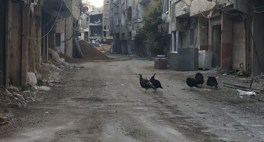 Quartiers sud de Damas