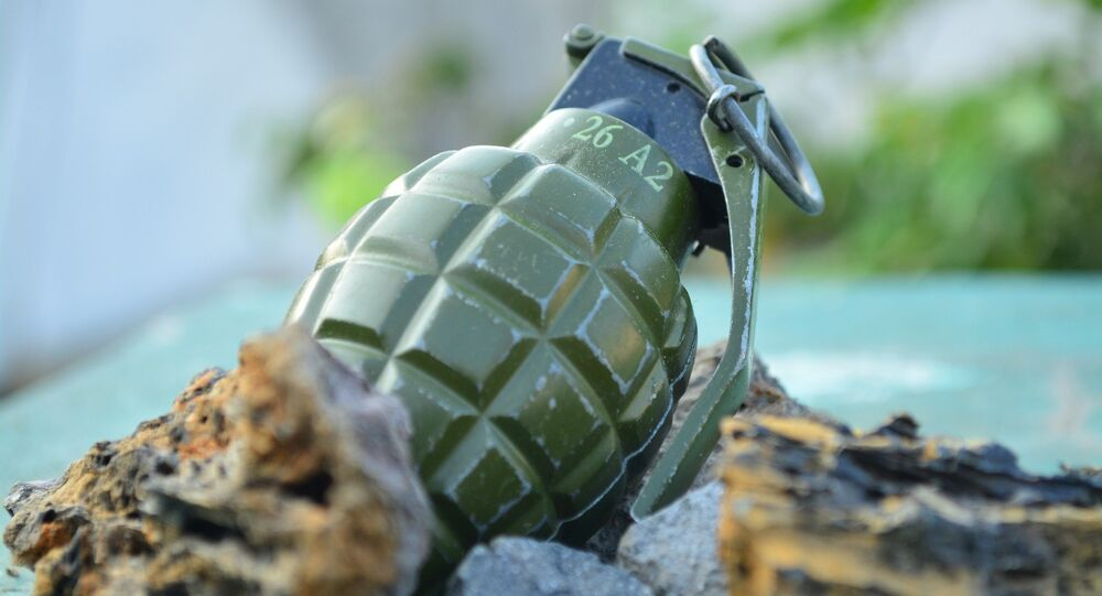 Une grenade, image d'illustration