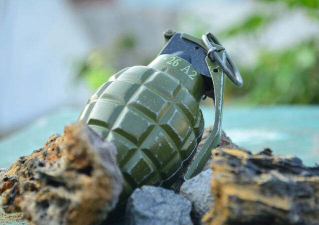 Une grenade, image d'illustration