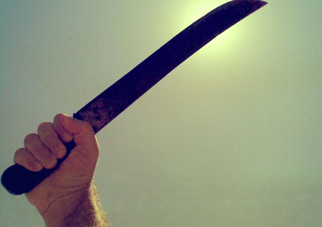 Une machette (image d'illustration)