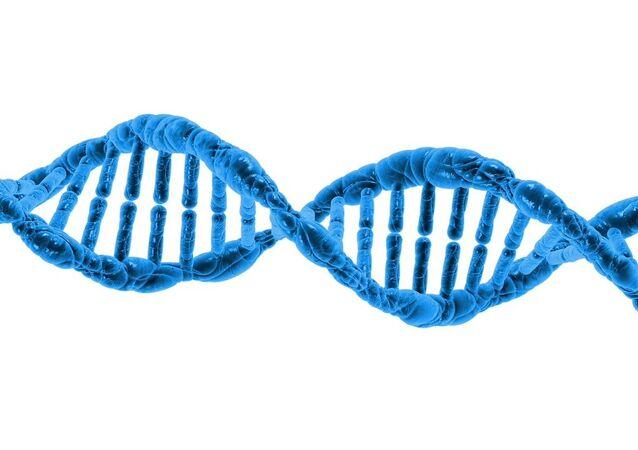 ADN, image d'illustration